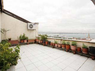 BOSPHORUS TERRACE GALATA FLAT (new) - Istanbul vacation rentals
