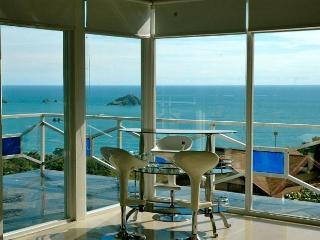 Monkey Magic! Incredible Ocean Views, Private Pool - Manuel Antonio vacation rentals