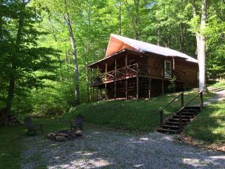 Elkwater Fork Cabin - Monterville vacation rentals