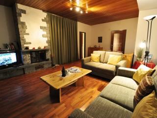 Apartment Nina - Zermatt vacation rentals