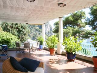Capri -  Terrace  Apartment - 8+2 Pax - Capri vacation rentals