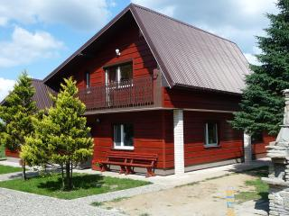 WISŁOK RIVER HOUSE - GARDEN SUITE - Sanok vacation rentals