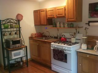 Loft apt. with Creek and Waterfall. 15min 2 HITS - Saugerties vacation rentals