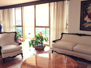 Penthouse Angel Independence Balcony Airport Servi - Mexico City vacation rentals