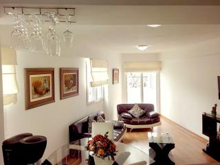 Nice & New full equipped Miraflores - Lima vacation rentals
