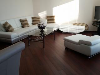ID 5518 | 2 room apartment | Laatzen - Laatzen vacation rentals