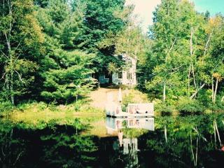 WATERFRONT COTTAGE/GUEST HOUSE N. OTTAWA/GATINEAU - La Peche vacation rentals