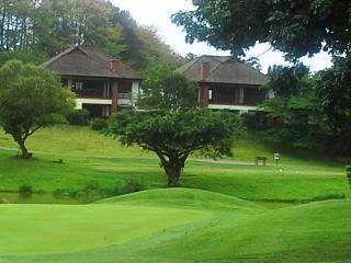 The Magnificent Sunbird - Pennington vacation rentals