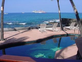 Oceanfront Beauty in Kona - Kailua-Kona vacation rentals