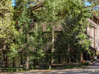 Affordable! 2BR/1BA Magical Mountain Retreat Condo - Breckenridge vacation rentals