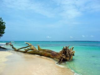 Bocas Apartments Small - Bocas Town vacation rentals