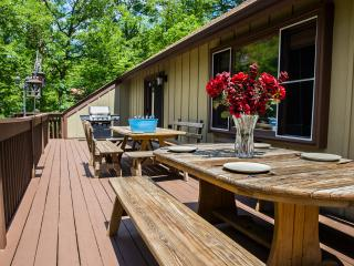 Summer Special - 3000sf, with Fireplace, BBQ, Wifi - Bushkill vacation rentals