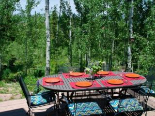 Mountain Retreat with Great View and Back Country Out the Back Door! Brand new Appliances/Cozy Home! - Silverthorne vacation rentals