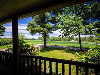Newly Renovated 1920's Farm House with Scenic Views of the Mountain!! - Ohiopyle vacation rentals