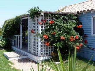'Casita Azulita'  a short walk to the beach - El Palmar vacation rentals