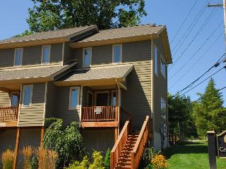 Perfect Townhome with Hot Tub - McHenry vacation rentals