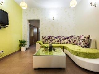 Modern and Cozy living in buzzing Hauz Khas Villag - New Delhi vacation rentals