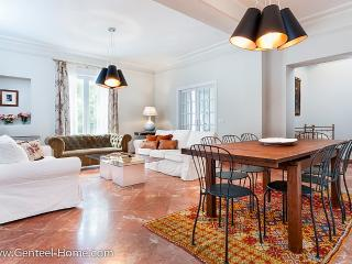 Diego de Riaño, great luxury apartment downtown - Seville vacation rentals