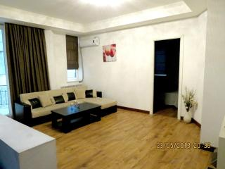 Luxury 2BRs Apartment close Pekini Avenue - Tbilisi vacation rentals