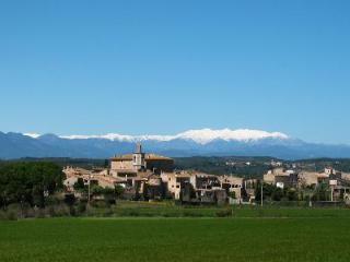 Castell Sant Mori- grand multi-level castle, exquisite courtyard- garden, pool - Sant Mori vacation rentals