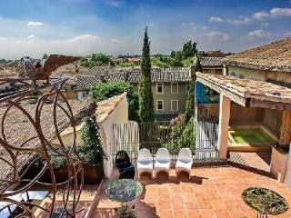 Luxury Historic Townhouse Le Collectionneur with Rooftop Terrace, Hot Tub, Indoor Pool & Maid - L'Isle-sur-la-Sorgue vacation rentals