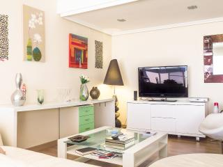 FLAT CLOSE TO THE BEACH WITH  OCEANOGRAPHIC´S VIEW - Valencia vacation rentals