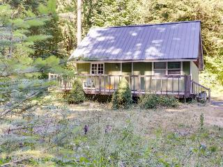 Sweet, pet-friendly mountain cabin with private hot tub! - Rhododendron vacation rentals