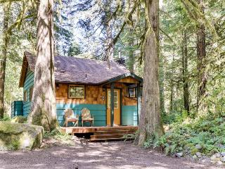 Modern, cozy mountain retreat  with hot tub! - Rhododendron vacation rentals