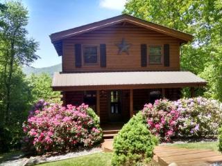 Apple of My Eye Location: Between Boone & Banner Elk - Boone vacation rentals