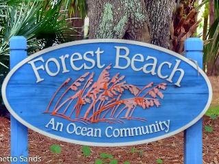 249 Seaside Villa - Hilton Head vacation rentals