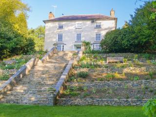 Tregaron Manor - Llangeitho vacation rentals