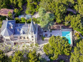 Chateau Vaucluse - France vacation rentals