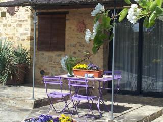Charming apartment in a small Chianti Farmhouse - Barberino Val d'Elsa vacation rentals