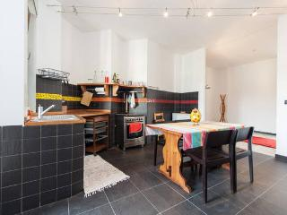 BIG AND BRIGHT UP TO 10 PEOPLE - Turin vacation rentals