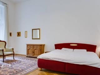 BIG APARTMENT at Wenceslas Square - Prague vacation rentals