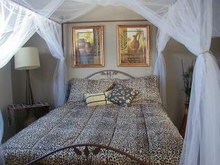 Serenity Hillside - African - Cochrane vacation rentals