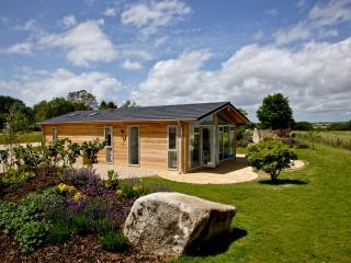 8 Southern Halt located in Dobwalls, Cornwall - Doublebois vacation rentals