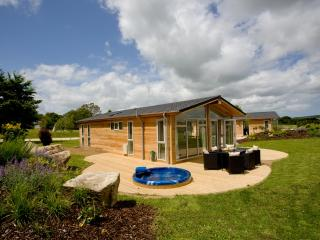 9 Southern Halt located in Dobwalls, Cornwall - Doublebois vacation rentals