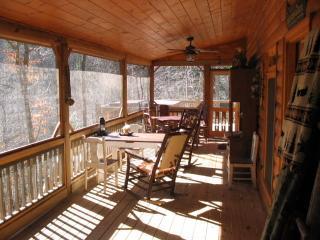 Lake Hideaway lakeside cabin - Ellijay vacation rentals