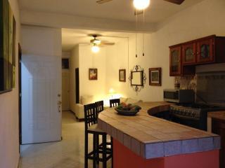 GREAT PLACE!! 2 BEDROOMS 2 BATHROOMS,  OLD TOWN! - Puerto Vallarta vacation rentals