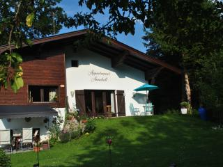 Appartement for 5 Peoples - Kirchberg vacation rentals