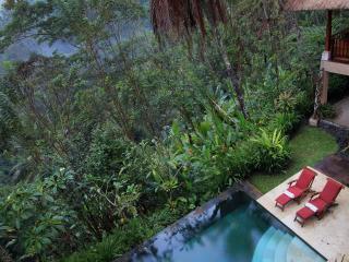 4 Bed Rooms Pool Villa Rental Ubud Hideaway - Ubud vacation rentals