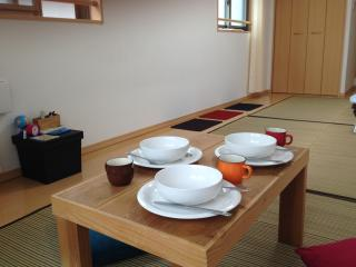 Nicest Access, Newly Built, Clean, Mobile WiFi - Kyoto vacation rentals