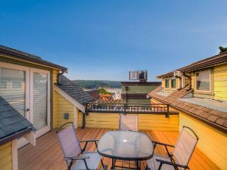 New 2 Bedroom Condo in Town! - (Churchill Plaza #4) - Friday Harbor vacation rentals