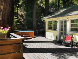 EASY DAYS - Guerneville vacation rentals