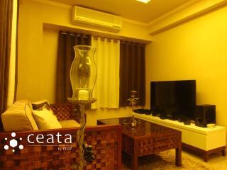 CEBU CITY 1 BEDROOM MOVENPICK - Mactan Island vacation rentals