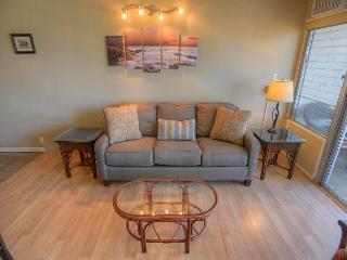 Ocean View Two Bedroom Two Bath in a Central Location - Kihei vacation rentals