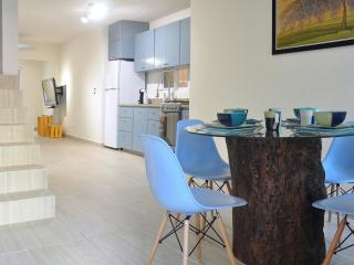 2 bdr 2 ba 4 block 2 beach Wifi bbq - Playa del Carmen vacation rentals