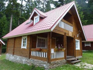 Alpine Chalet Hunters - Borovets vacation rentals