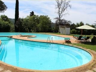 Viola Really Stylish in Versilia-Camaiore - Camaiore vacation rentals